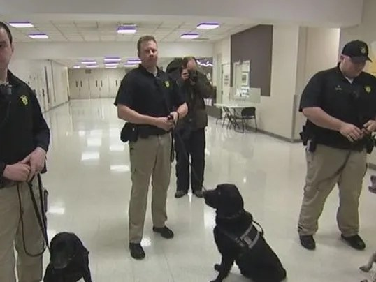 Close Protection Training Usa