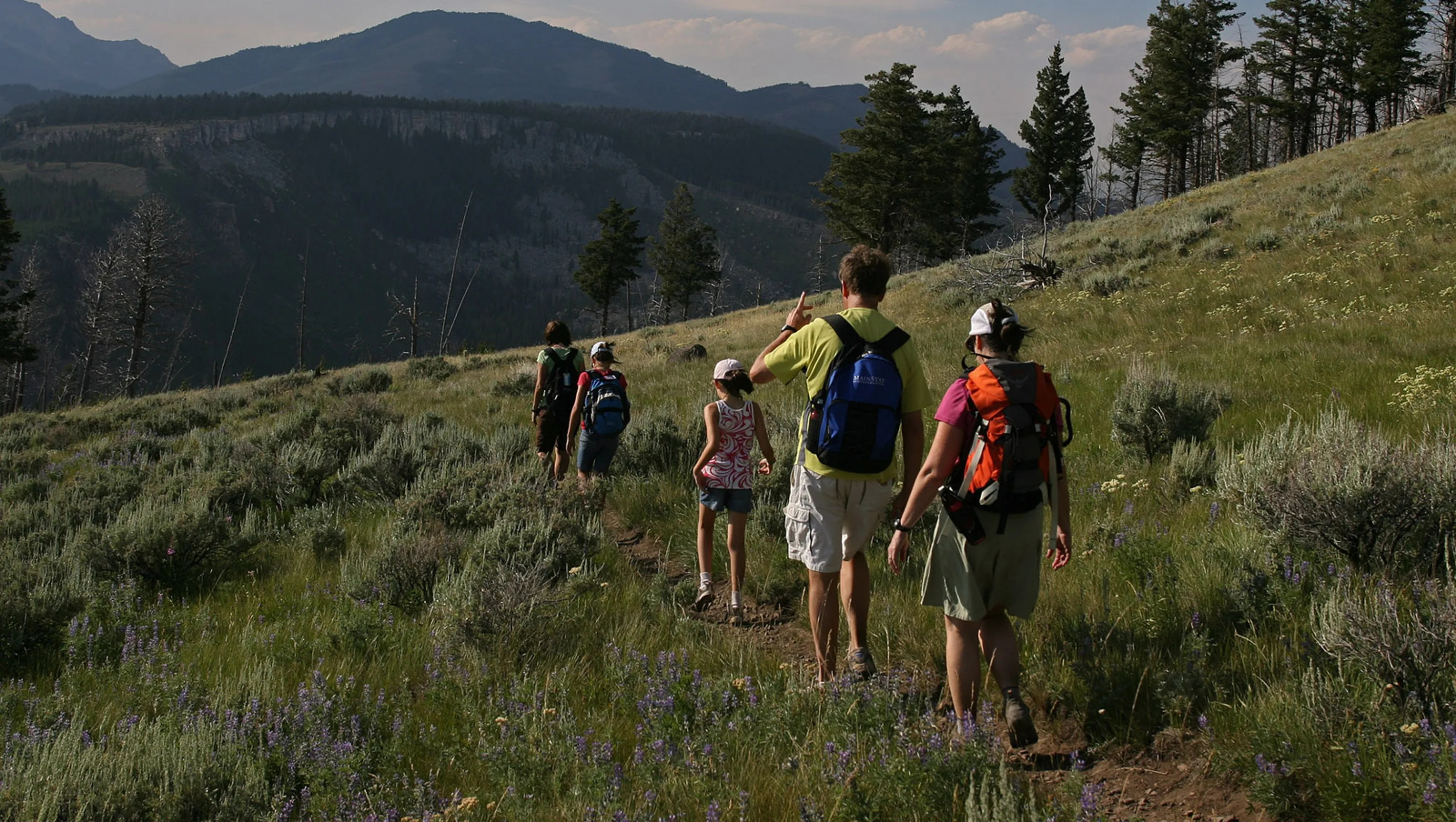 Yellowstone National Park Fun And Educational Activities