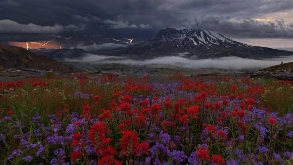 amazing of u. landscapes