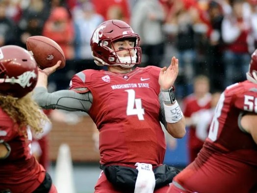 Image result for luke falk