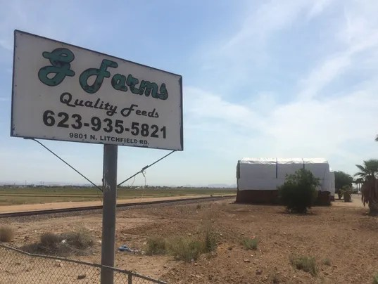 G Farms