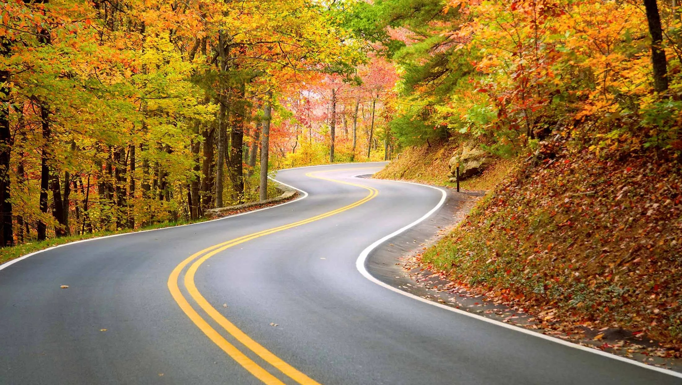 Tennessees most dangerous drive Tail of the Dragon things to know