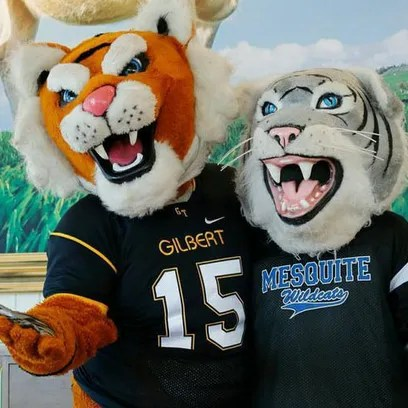 The Gilbert and Mesquite highschool mascots are friendly