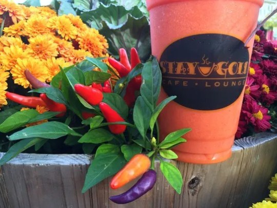 Stay Gold Smoothie and colourful plants