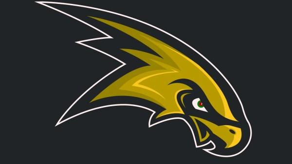 High School Hawks Football Logo