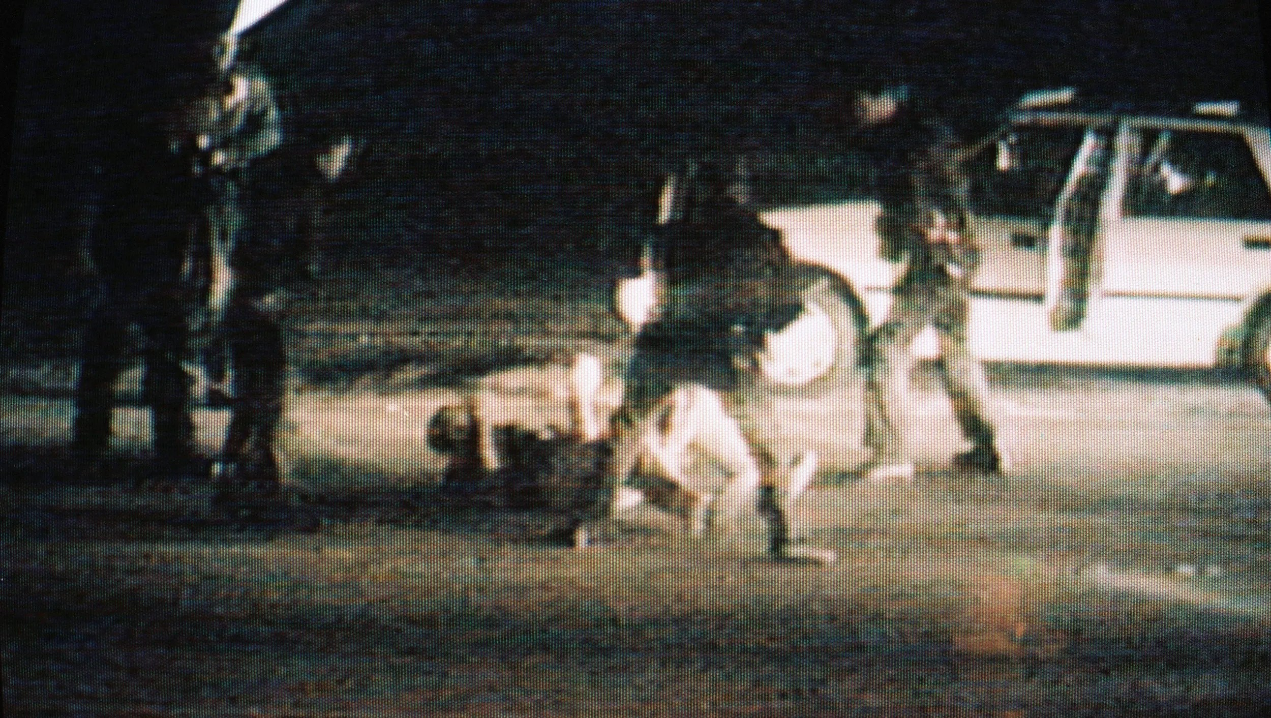 On March 15, 1991, CBS aired footage of the Rodney King beating that occurred earlier that month in Los Angeles.
