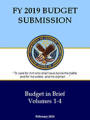 VA Budget
