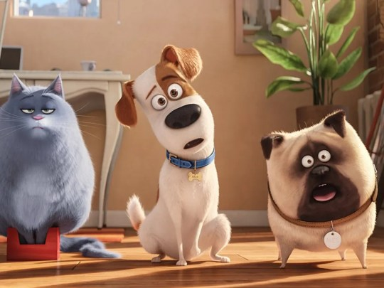 """""""The Secret Life of Pets"""" is coming to Universal Hollywood with """"Off the Leash!"""""""