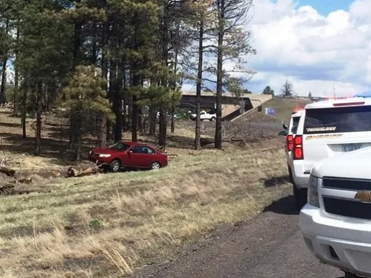 A car involved in a pursuit near Bearizona Wildlife