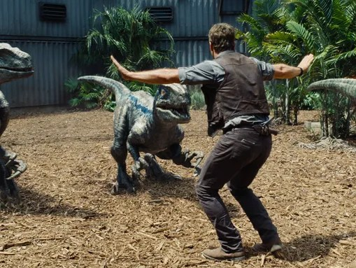 "Owen (Chris Pratt) trains dinosaurs in ""Jurassic World."""