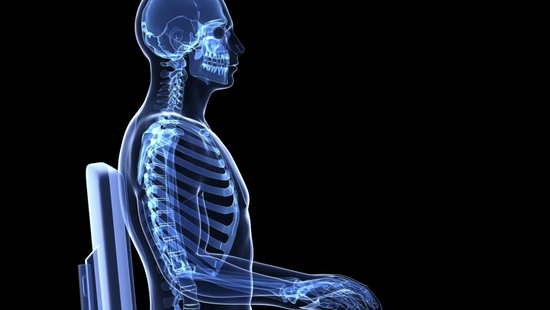 ave skeleton diagram [ 3200 x 1680 Pixel ]