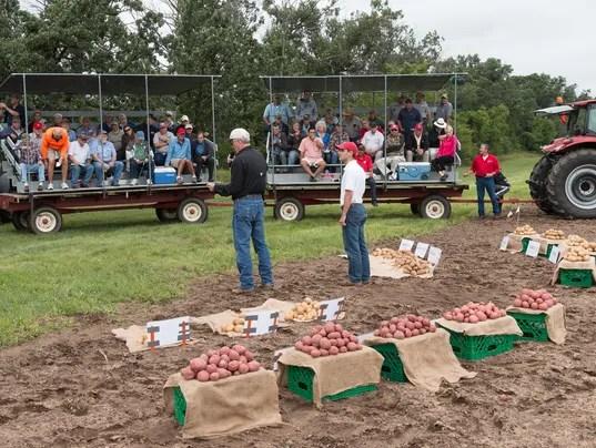 Potato Research 1.jpg
