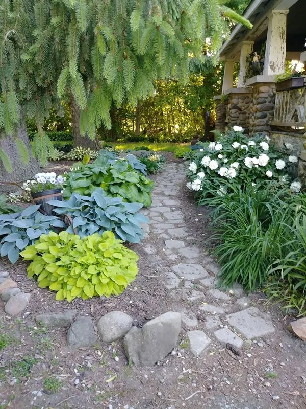 ' hosta garden' week's homestyle