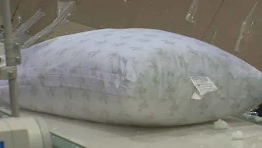mypillow accreditation revoked by the