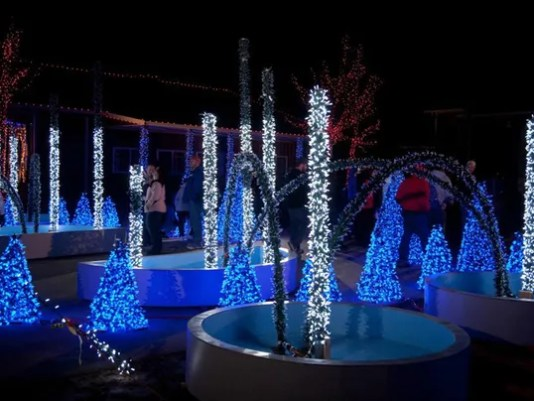 Image result for milwaukee holiday lights display