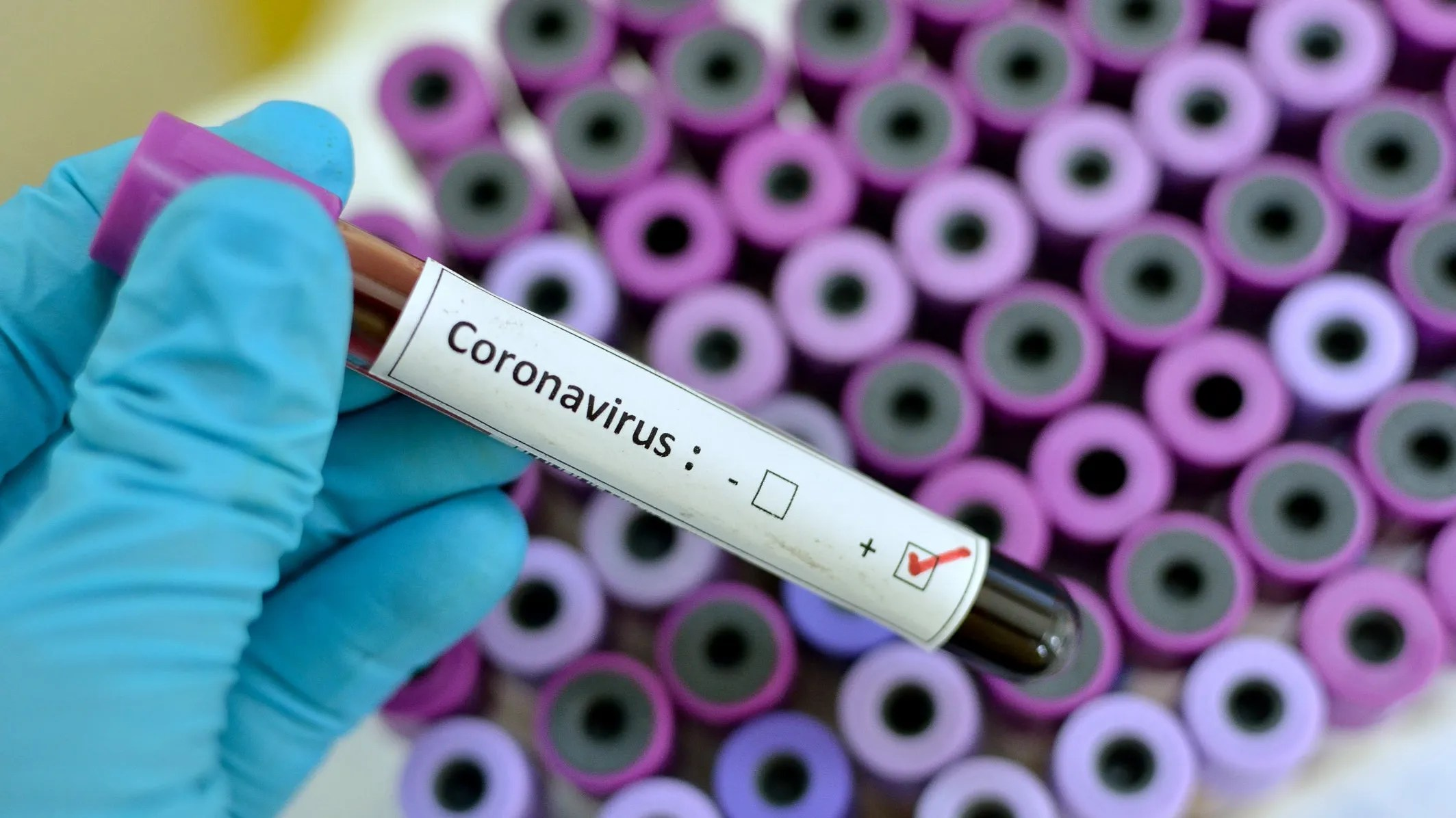 Plague Inc. video game more popular after coronavirus outbreak