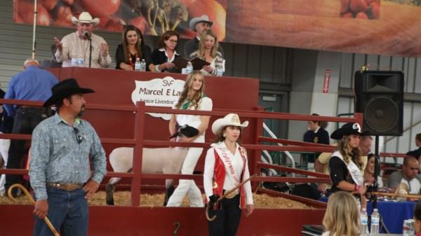 Salinas Valley Fair Auction Brings In 1.86 Million