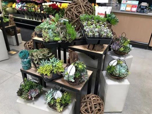 hyvee floral sioux falls