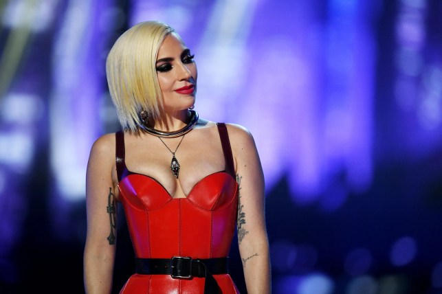 Lady Gaga: Is she hinting at a return to her more risqué side with nude photos?