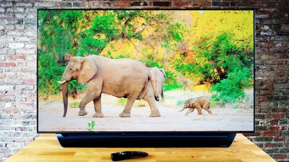 The game (and elephants) have never looked better on this screen.