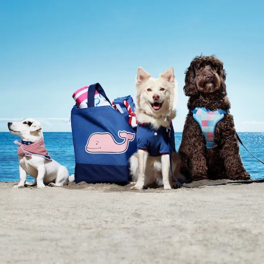 Vineyard Vines for Target includes pet items.
