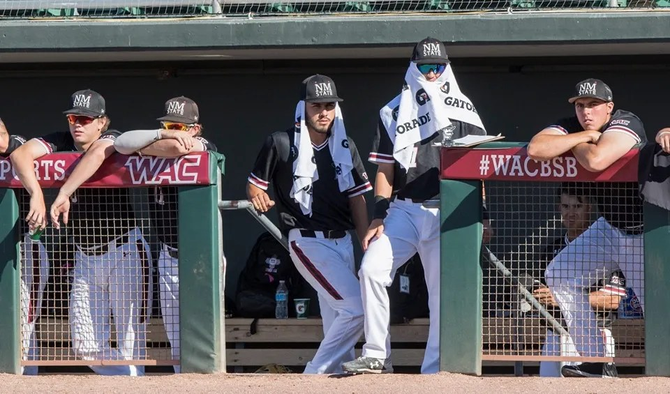 Mexico State Baseball Eliminated In Wac Tournament