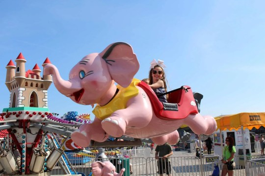 Casino Pier: Elephant Express, a flying elephant ride, will open this summer on Casino Pier in Seaside Heights.