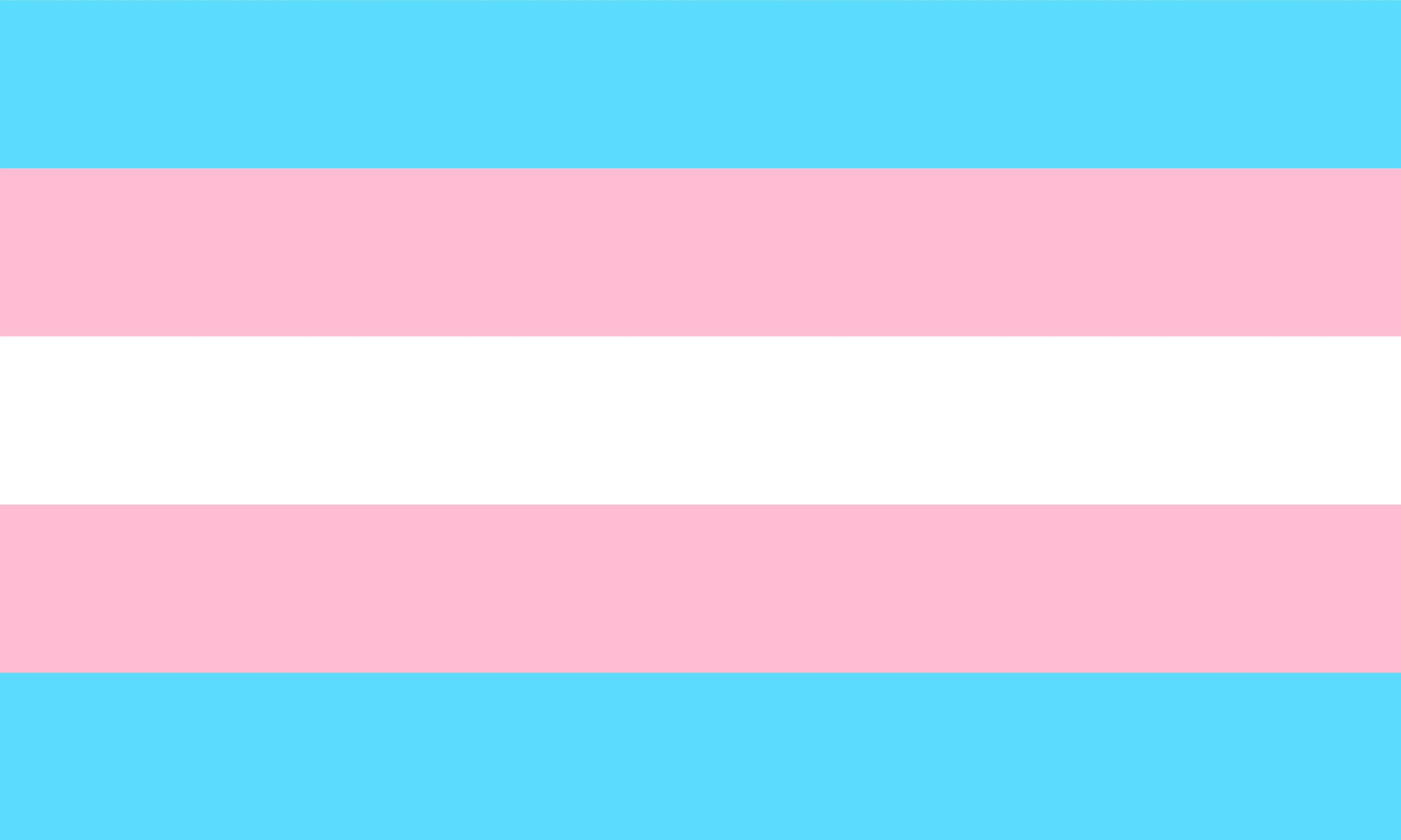 pride flags rainbow