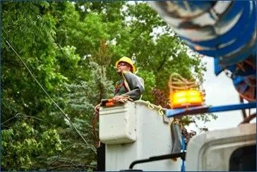A Consumers Energy employee inspects its powerline.