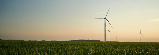 Wind turbines at Michigan-based utility Consumers Energy's Cross Winds Energy Park in Tuscola County, Michigan.