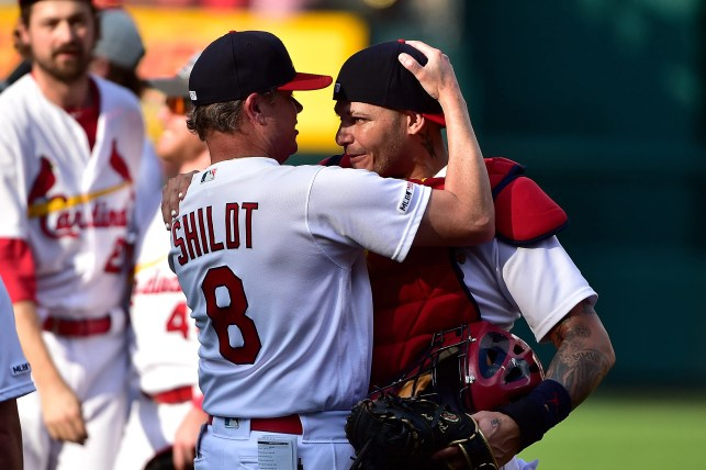 'We're just getting started': Cardinals back where they belong after ending postseason drought