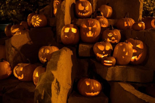 Pumpkins decorate the Haynie's Corner fountain following a free pumpkin carving event in Evansville, Ind., Wednesday evening, Oct. 23, 2019.