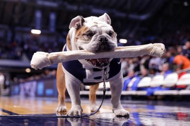 Dec. 7: The Butler mascot