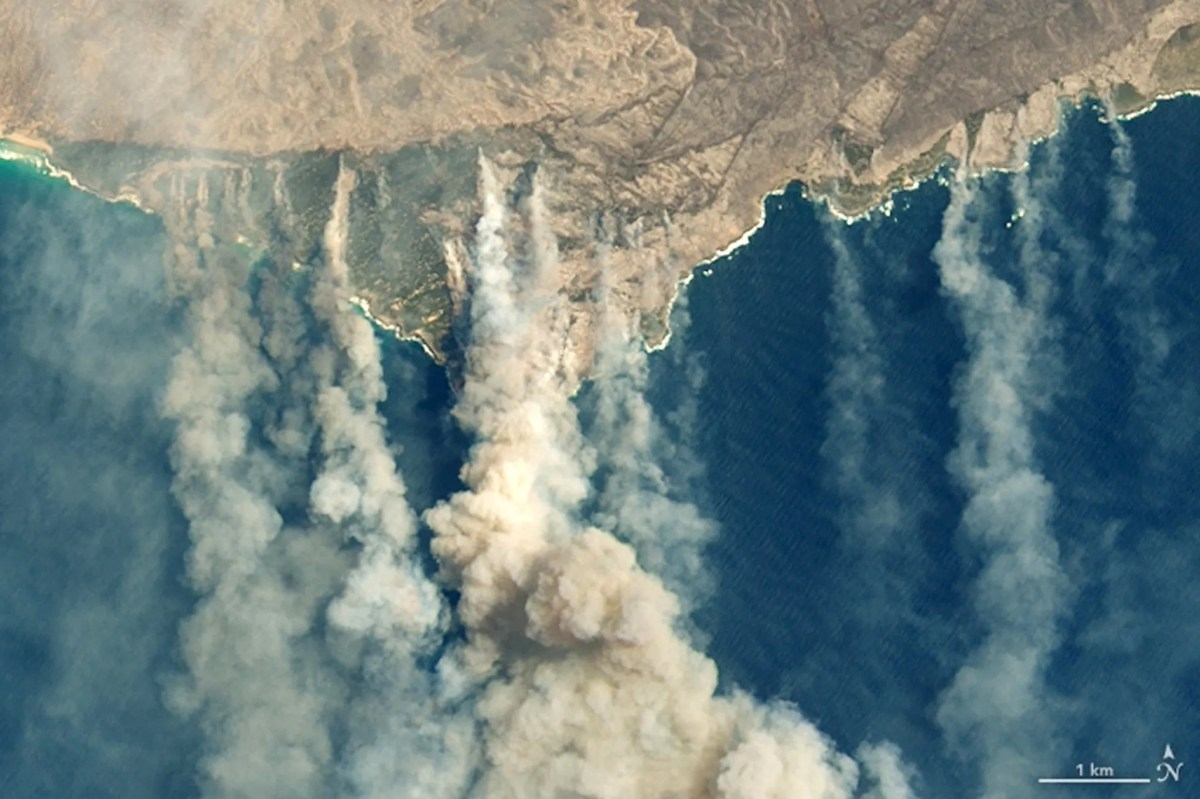 A satellite image of NASA's Earth Observatory shows burnt earth and thick smoke over Kangaroo Island, Australia, on January 9.