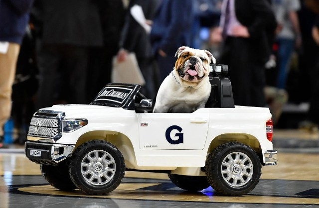 Feb. 19: Georgetown mascot Jack the Bulldog rides in a car during the game against Providence at Capital One Arena.