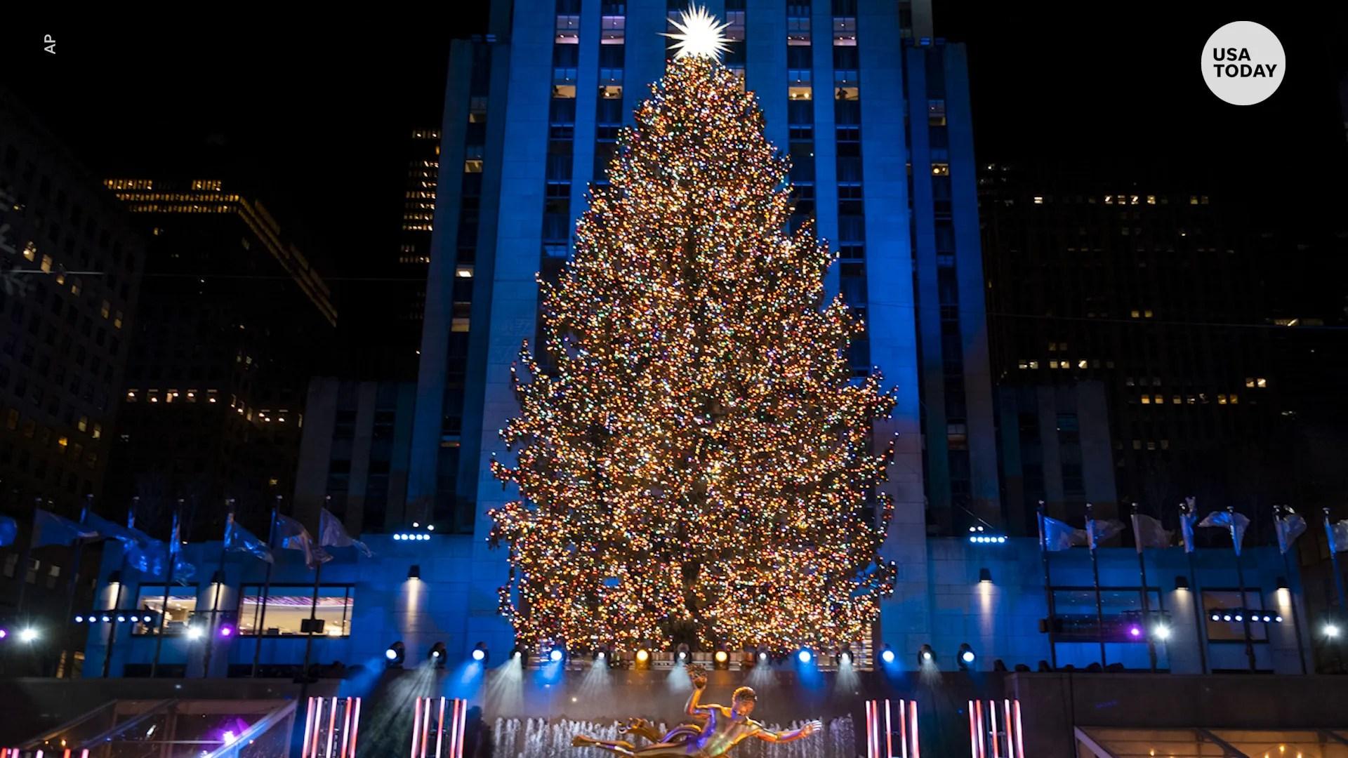 rockefeller center christmas tree dazzles at lighting ceremony