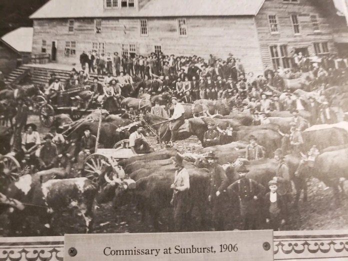Sunburst was a large logging community in southeastern Haywood County at the turn of the 20th century where Black people worked alongside white people. The town is now buried under Lake Logan near Canton.