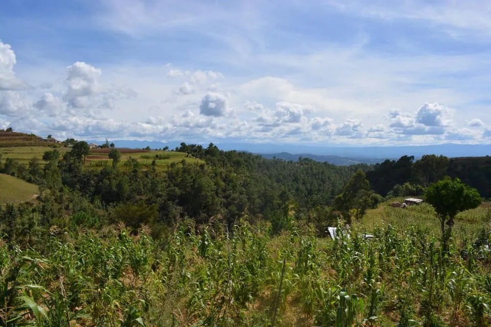 A Peace Corps volunteer in Guatemala took this photo in November 2018 overlooking the corn fields by a middle school where she taught. The woman said her experience in the Peace Corps was tainted by how staff responded when she reported being sexually assaulted.