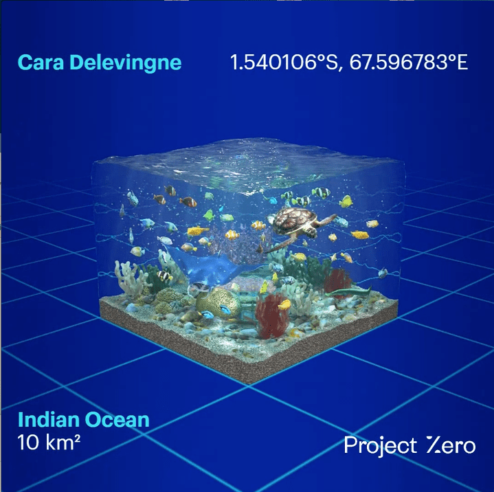 Cara Delevingne joins Project Zero's initiative to save the oceans.  This is its own ocean coordinate to