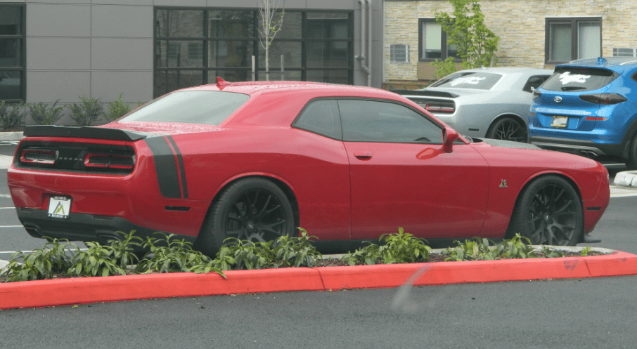 Detectives searched the Dodge Challenger and recovered 11counterfeit driver's licenses for Washington and Oregon states,17 new Apple iPhones,four new Apple watchesand a Costco credit card with a nearly $10,000 limit.