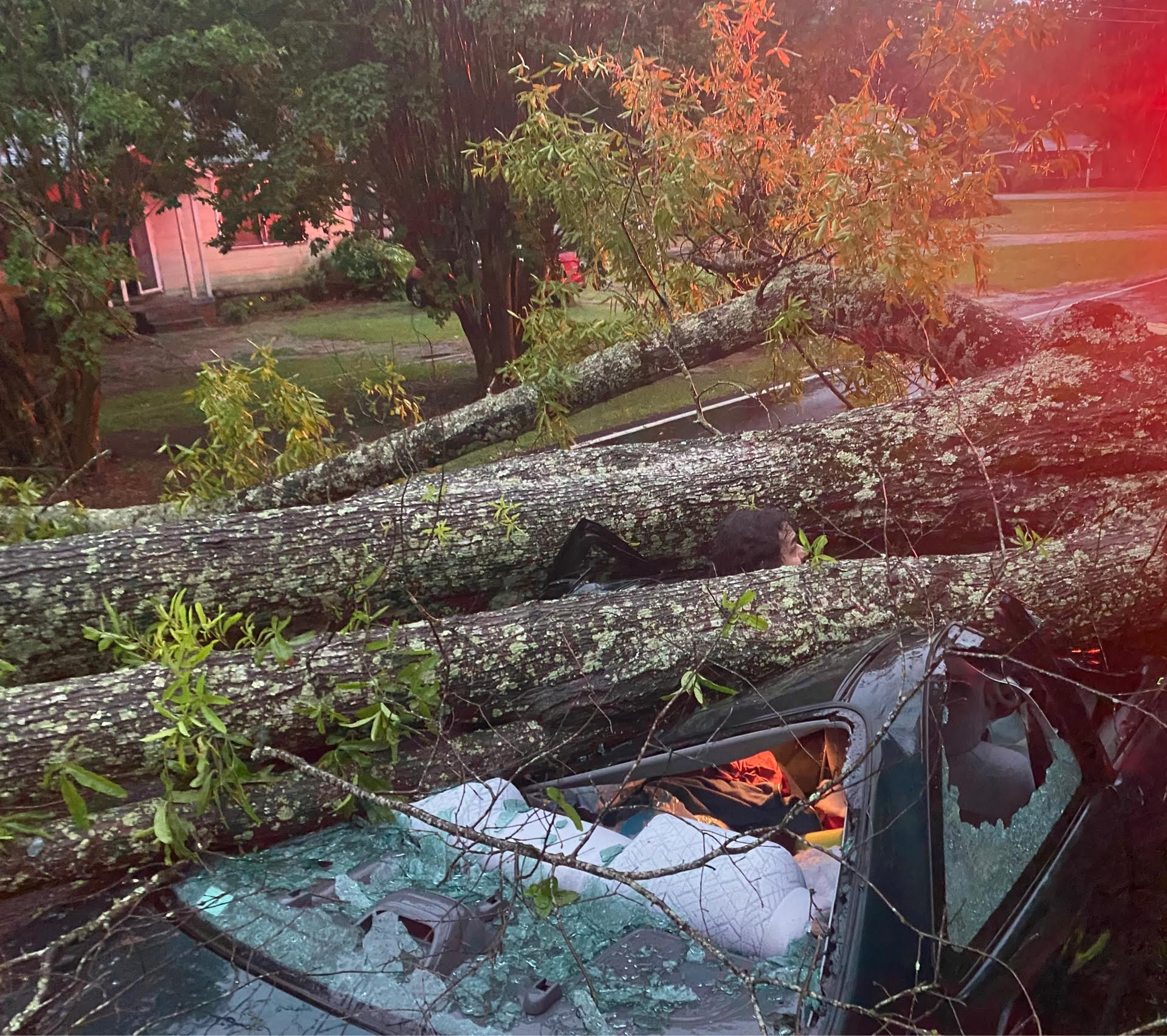 Henri Cheramie was in his car when a powerful storm blew through the River Region taking a large tree down around him.