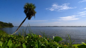 The Indian River Lagoon, as seen from Rockledge Drive. Photo: TIM SHORTT/FLORIDA TODAY