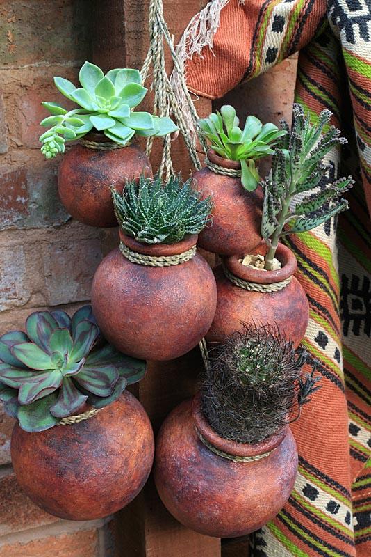 Terracotta Pots Succulents