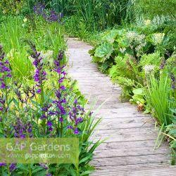 Boardwalk Garden Path Gardening Flower And Vegetables