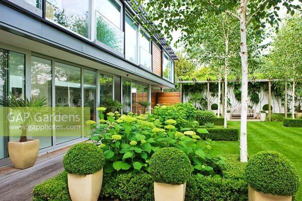 gap gardens - modern garden