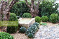 GAP Gardens - Cobbled courtyard with gravel garden ...