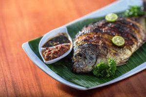 Foto: Ikan bawal bintang, jamuan samudra (ist)