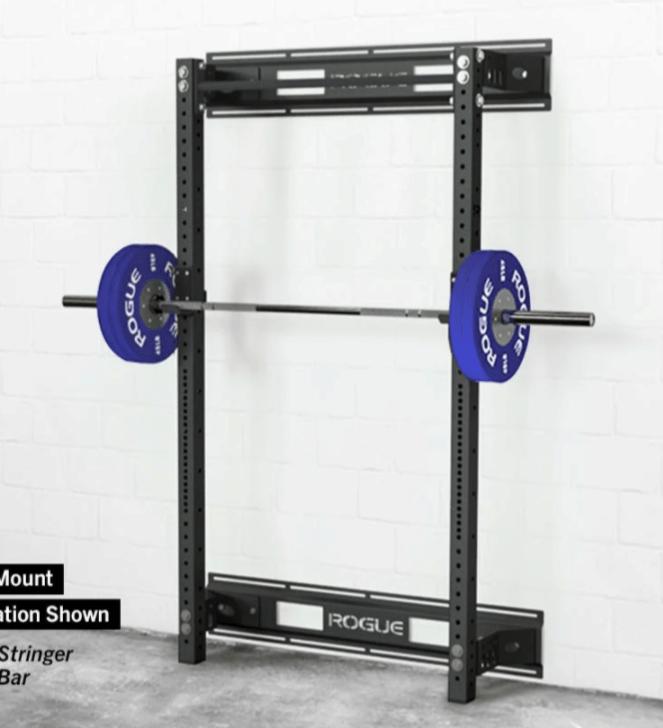 titan x 3 fold back wall mounted squat rack