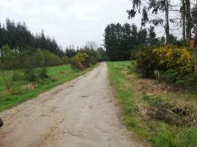 carretera sin asfaltar