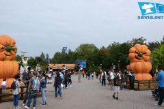gardaland-tribe-history-aperture-speciali-magic-halloween-2014-14